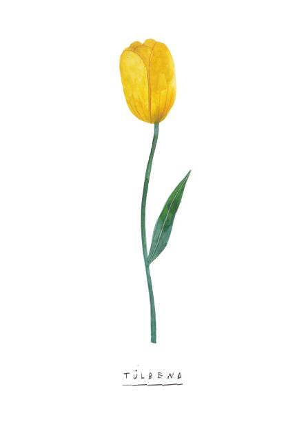 tulipArtboard 1 copy 6